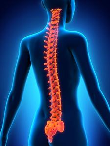 Maintenir un dos stable lors des exercices d'abdominaux