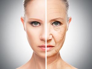 En ne mangeant que deux repas par joir, tu peux ralentir le vieillissement cellulaire