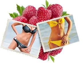 Conclusion et avis sur le Raspberry Ketone plus