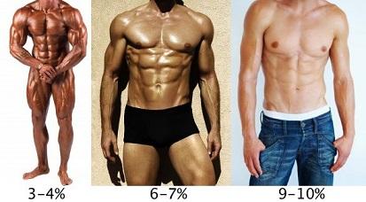 Pourcentage idéal de graisse corporelle masculine