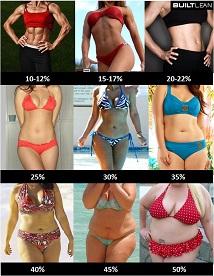 Pourcentage de graisse corporelle des adolescents